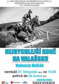 27. 11. 2016 - 26. 2. 2017 Nejrychlejší koně na Valašsku