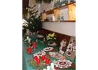 Pravidelná vánoční výstava