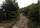 Lesy ČR upravují turistickou stezku na vrcholu Lysé hory