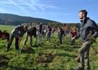 Zahájení výsadby v biokoridoru Jablunkov
