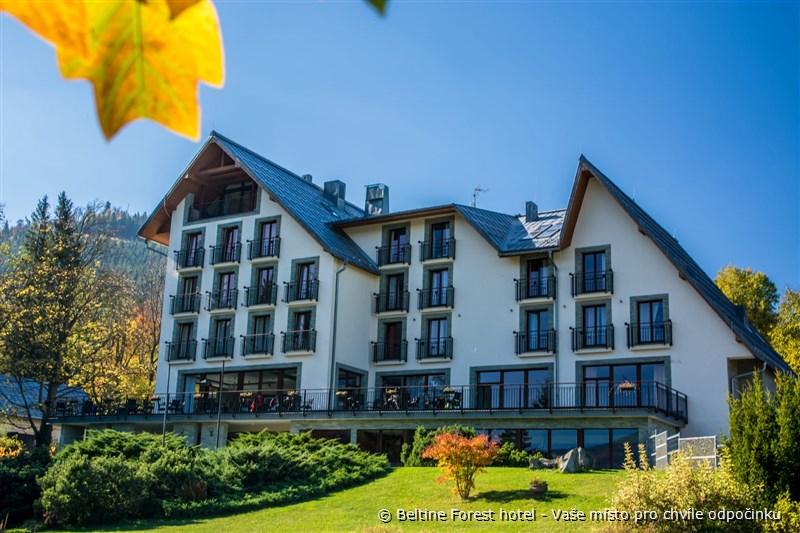Beltine Forest hotel - Vaše místo pro chvíle odpočinku