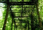 Pomozte zachránit nádherné pozemky bývalé frýdecké ZOO
